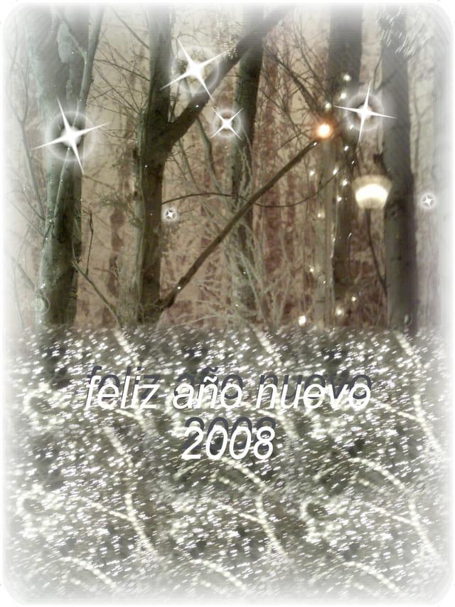 Joyeux 2008