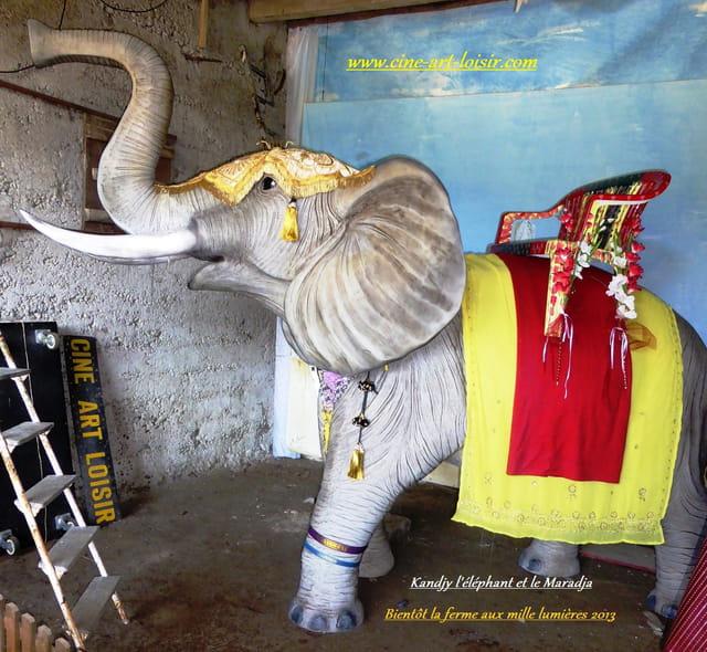Kandjy  l'éléphant à la ferme aux mille lumières 2013