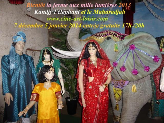 Kandjy l'éléphant  la ferme aux mille lumières 2013