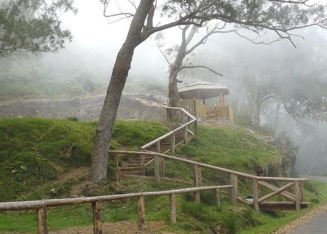 Kiosque pour pique-nique au coeur de la Forêt de Tamarins, dans les nuages