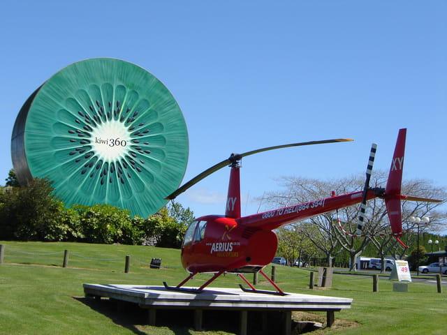 Kiwi géant contre hélico