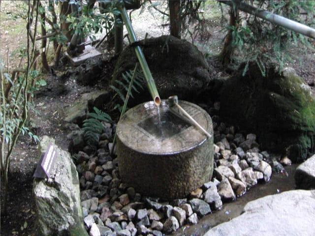 Kyoto (Tsukubai du temple Ryoanji).