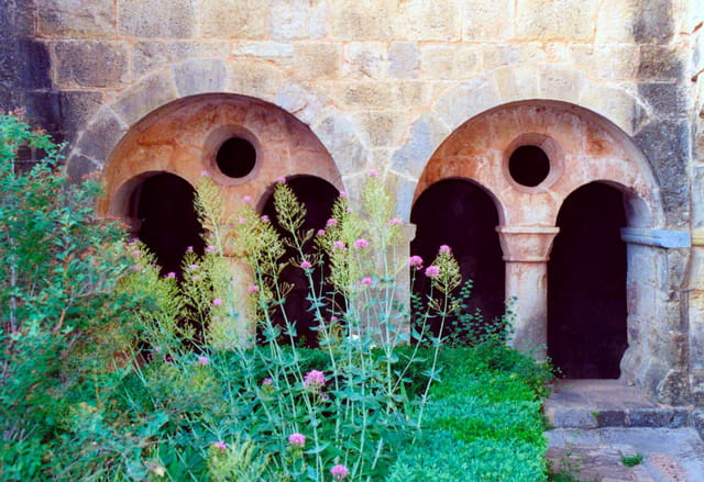 L'abbaye du Thoronet 10