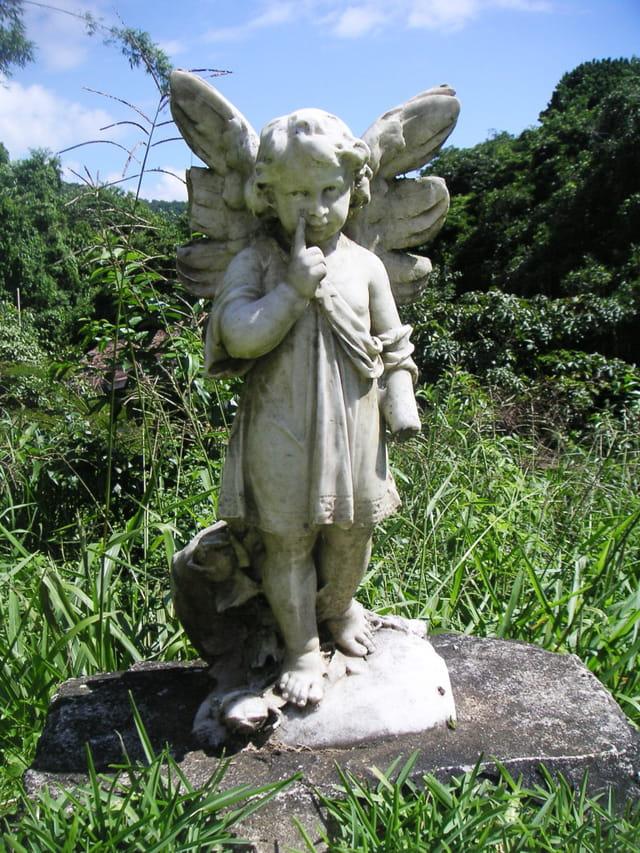 L'angelot