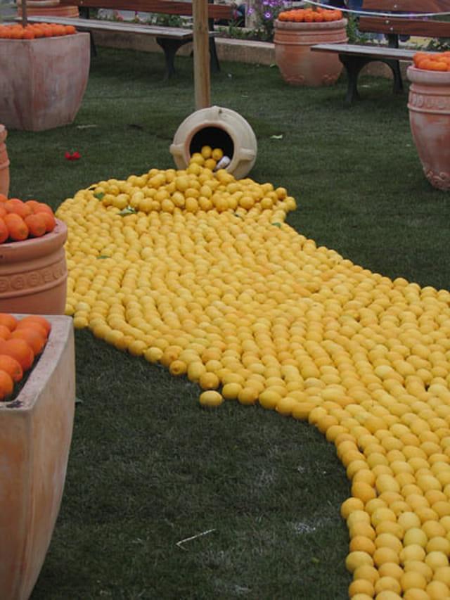 L'anse aux citrons