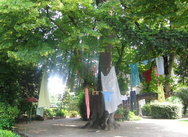 L'arbre à linge