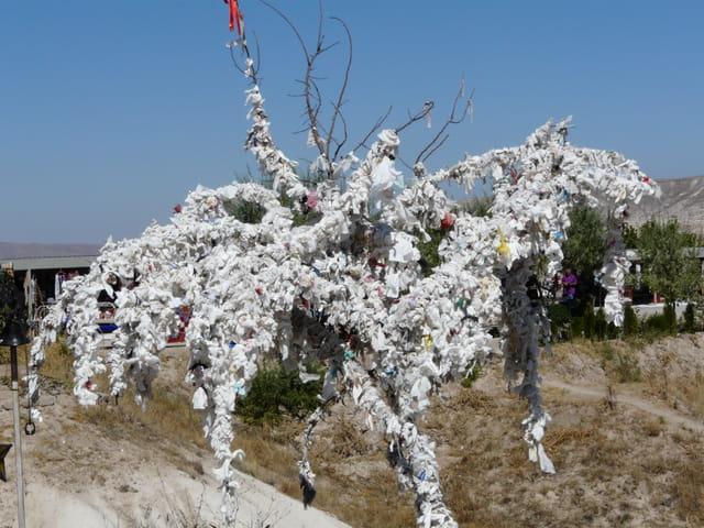 L 39 arbre souhaits par bernadette samin sur l 39 internaute - L arbre a souhait ...
