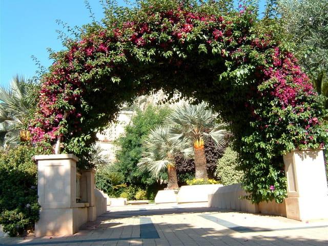 L'arche fleurie