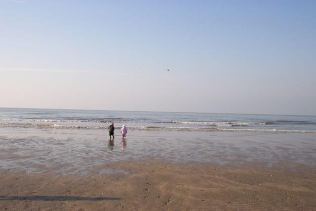 L'enfant, l'oiseau et la mer