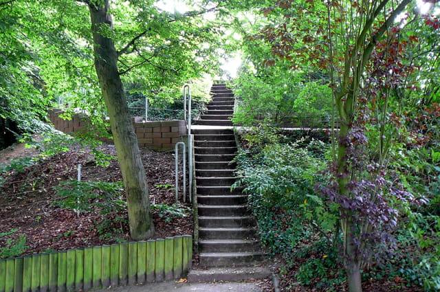 L'escalier du jardin botanique