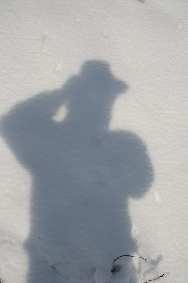 L'espions qui venait du froid