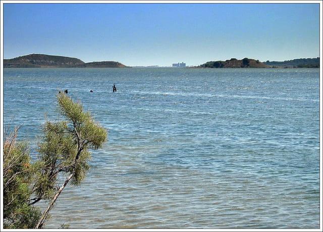 L'étang de peyriac sur mer