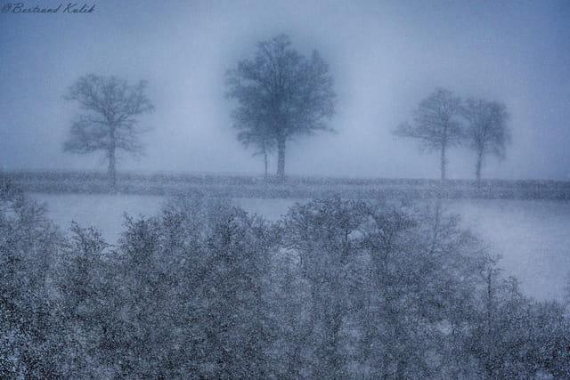 L'heure bleue, pointillisme de saison