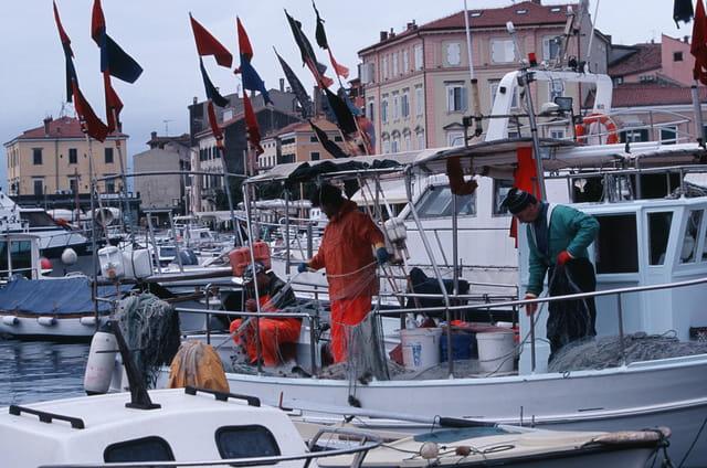 L'Istrie, témoin vivant d'une civilisation méditérannéenne 3
