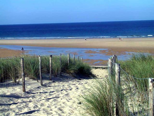 L'océan, la plage !