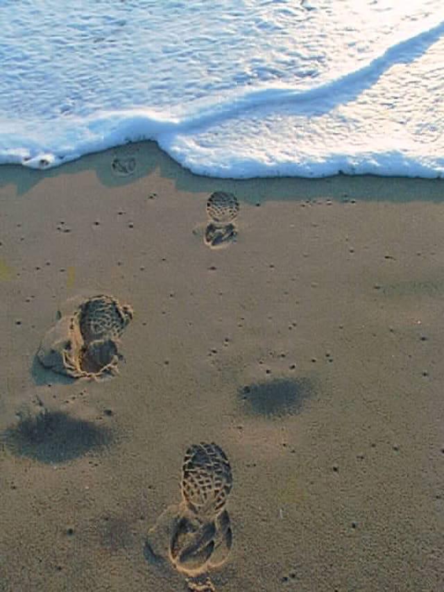 L'océan mousse, pas à pas....