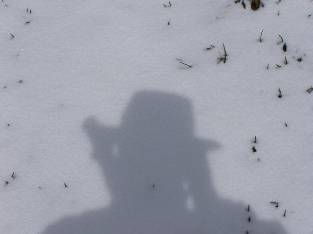 L'ombre au chapeau