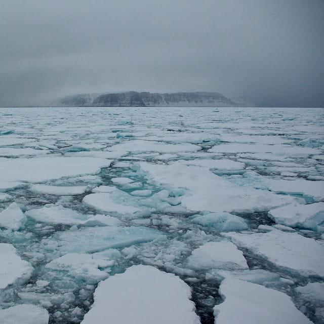 La banquise au large du Groenland