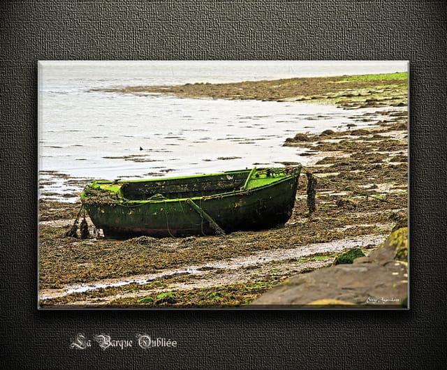 La barque oubliée 2