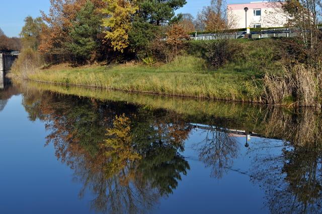 La berge se mire dans le canal