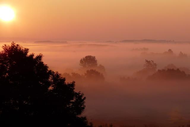La brume du matin.