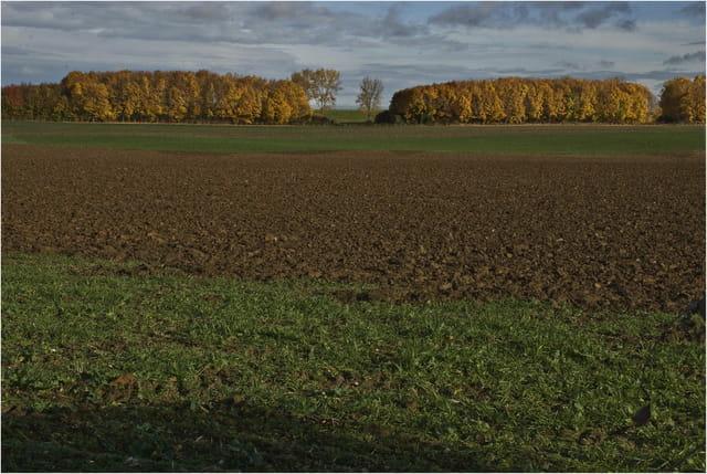 La campagne en automne