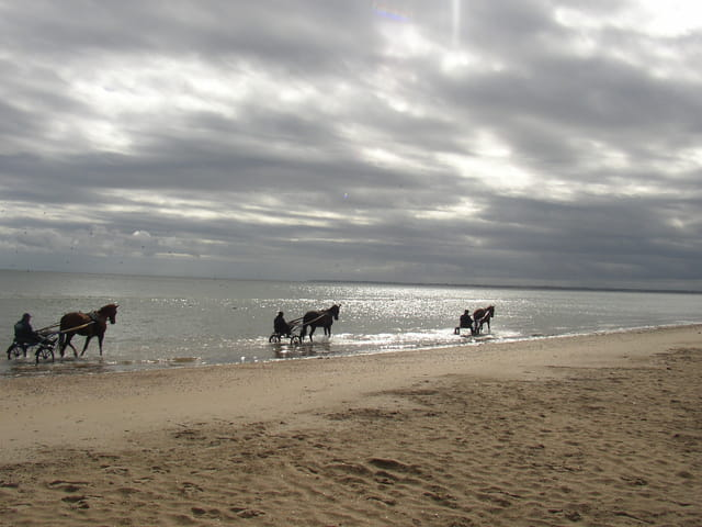 Balade à cheval sur la côte de nacre