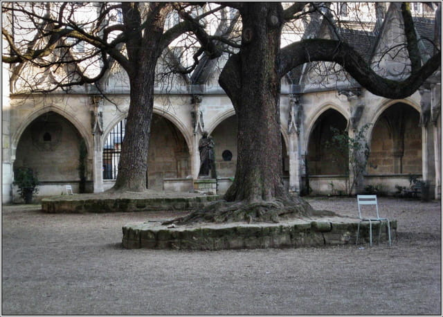 La cour de Saint Severin