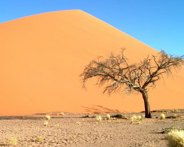 La fameuse dune 45 !