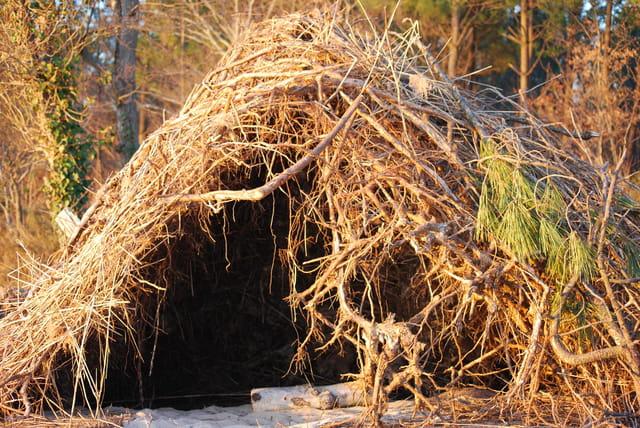La fausse hutte