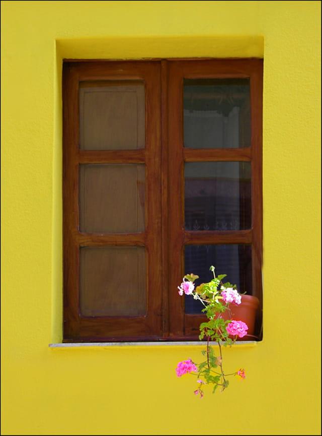 La fenêtre jaune