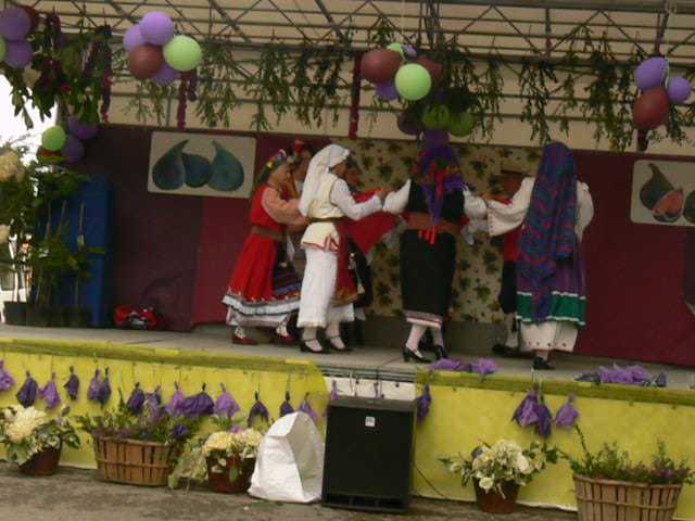 La fête de la figue