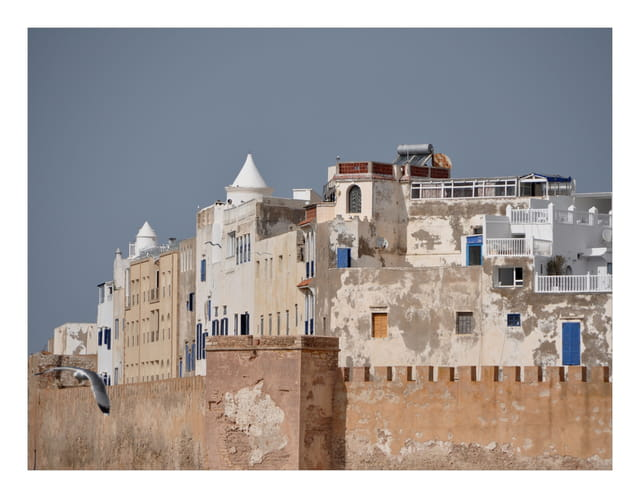 la flotte bleue d'Essaouira