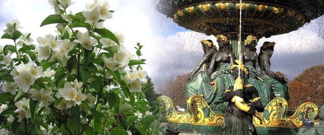 La Fontaines des Mers bien fleurie