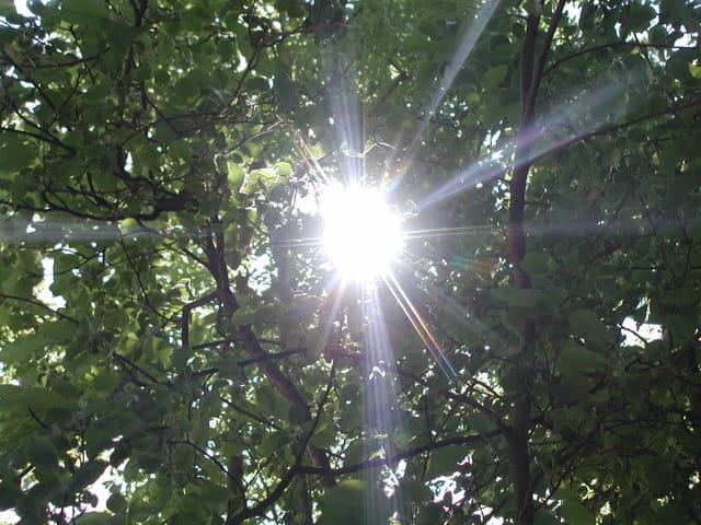 La force du soleil