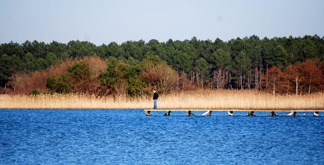 la jetée sur le lac de Sanguinet
