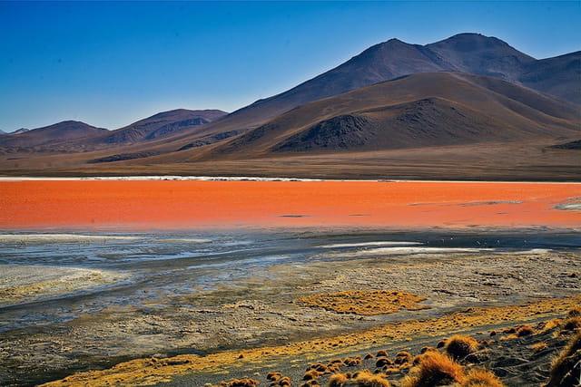 la Laguna Colorada et ses couleurs magiques