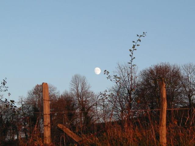 La lune face au soleil