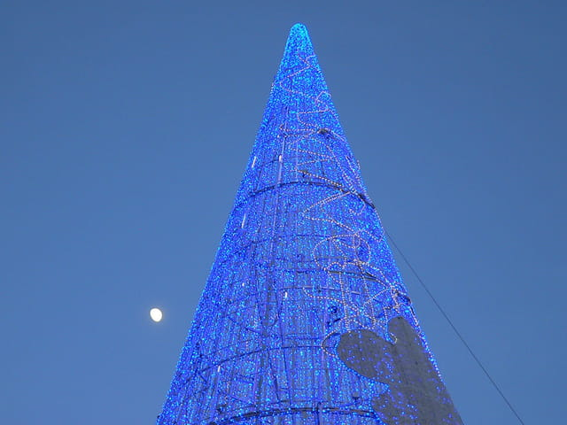 La lune se lève sur le sapin bleu