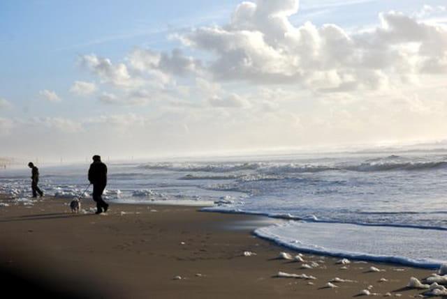 la marée monte