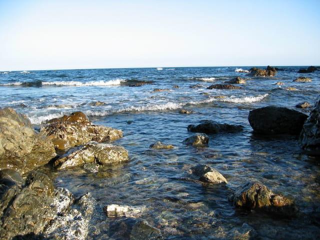La mer à Banyuls
