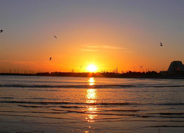 La mer le soleil et les mouettes