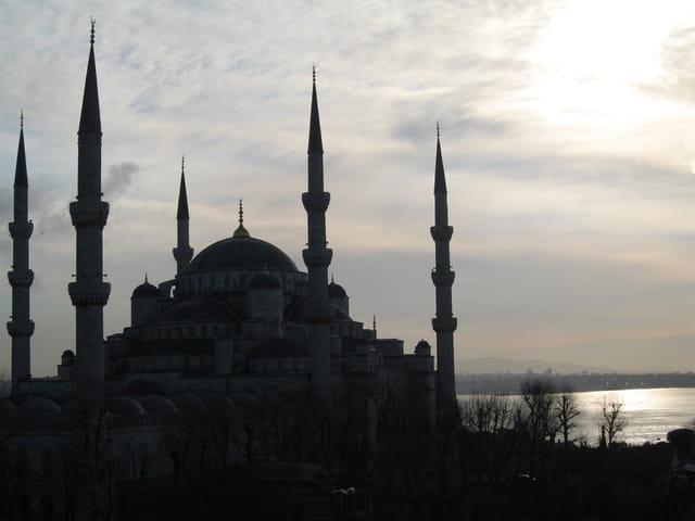 La mosquée bleue le matin