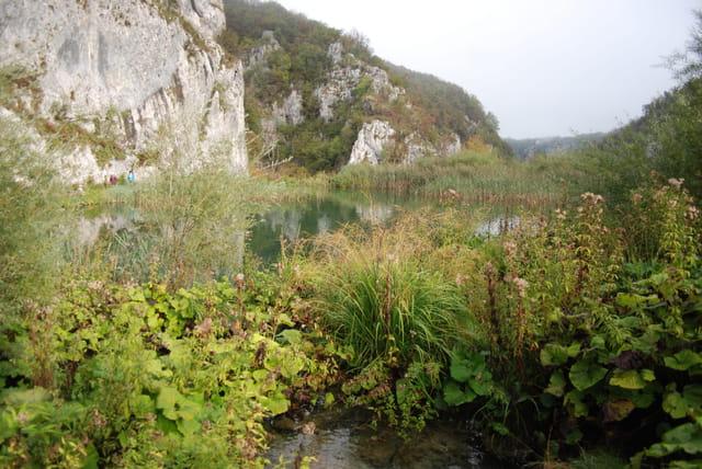 la nature sauvage des lacs de Plitvice