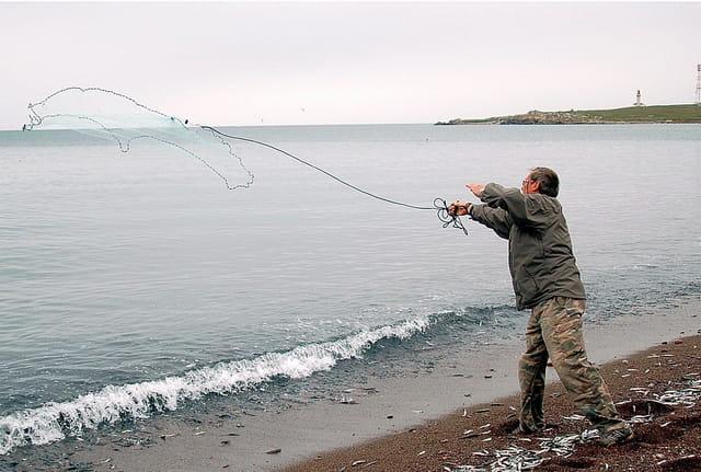 La pêche à l'épervier