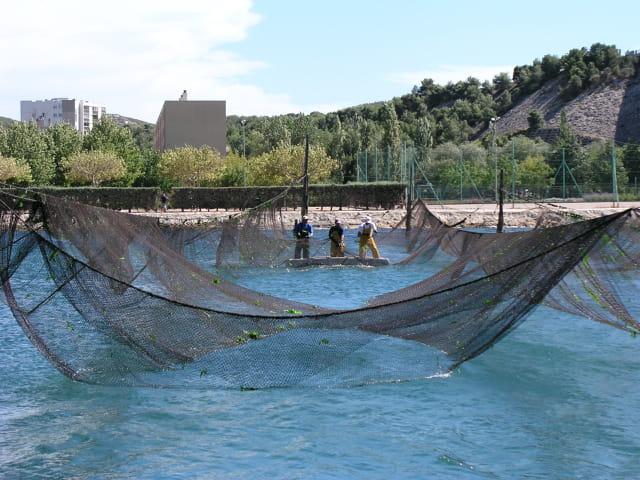 La pêche au calen