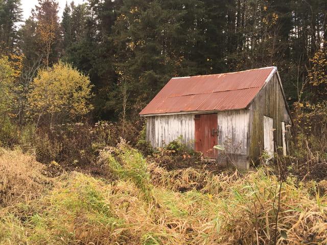 La petite maison dans la prairie par michelle mc murray sur l 39 internaute - Voir la petite maison dans la prairie ...