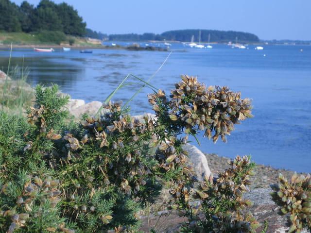 La petite mer : petit paradis breto