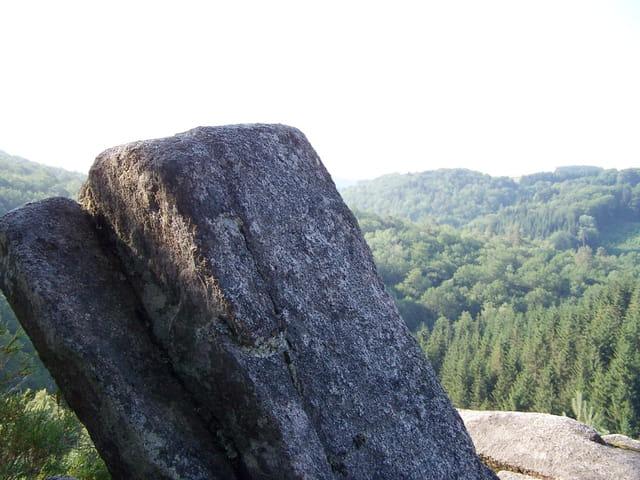La pierre et le bois