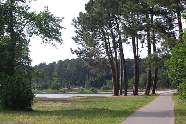La piste cyclable au bord du lac